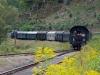 Mit der Dampfbahn durch die Fränkische Schweiz